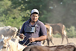 A man listens to the radio while herding cattle in northwestern Nicaragua.