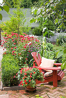 Red themed flower garden to attract hummingbirds, with brick patio, Adirondack chair, house, walkway, picket fence, beebalm Monarda in bloom, vegetables corn, tomatoes, shrubs, trees, landscape for pretty place to sit outdoors at home