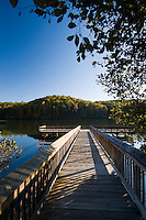 Boardwalk at Lake Oolenoy