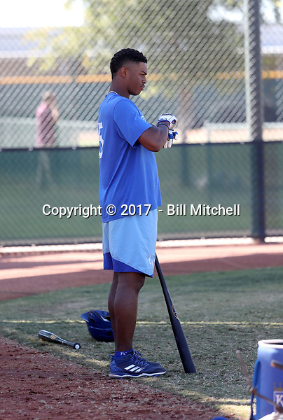 Khalil Lee - 2017 AIL Royals (Bill Mitchell)