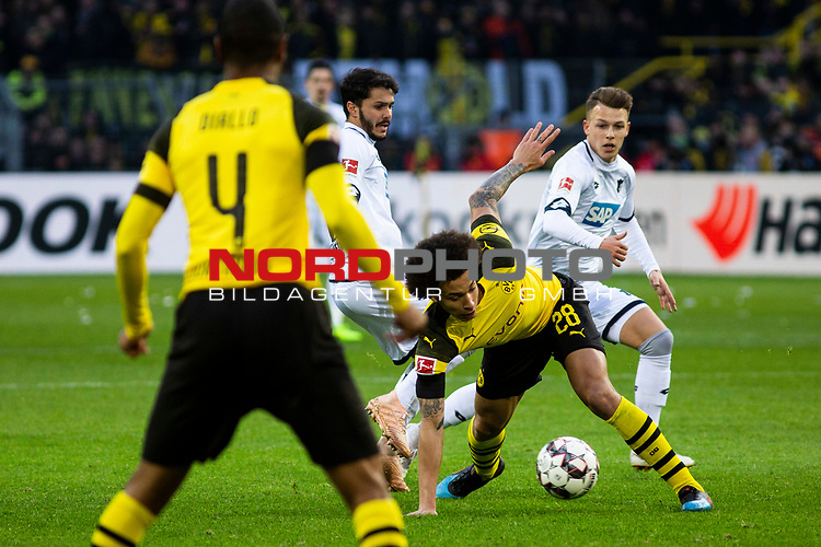 09.02.2019, Signal Iduna Park, Dortmund, GER, 1.FBL, Borussia Dortmund vs TSG 1899 Hoffenheim, DFL REGULATIONS PROHIBIT ANY USE OF PHOTOGRAPHS AS IMAGE SEQUENCES AND/OR QUASI-VIDEO<br /> <br /> im Bild | picture shows:<br /> Axel Witsel (Borussia Dortmund #28) gegen Leonardo Bittencourt (Hoffenheim #13) und Dennis Geiger (Hoffenheim #8),  <br /> <br /> Foto &copy; nordphoto / Rauch