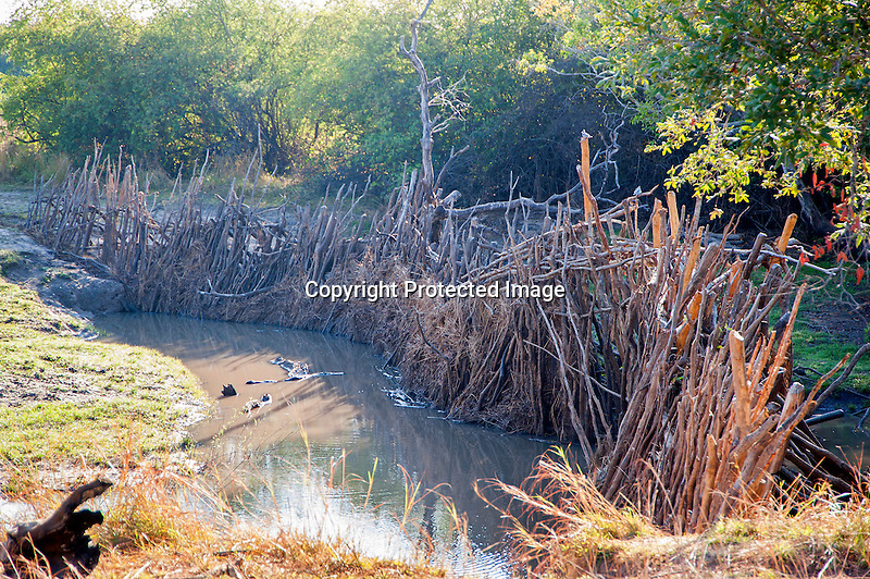 African Fish Trap on the Kafue River in Kafue National Park in Zambia