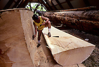Building Polynesian voyaging canoe, Hawai'iloa - Billy Ornellas prepares first rough cut of spruce logs that will become hulls of canoe; Halau Waa, Bishop Museum..4/13/91
