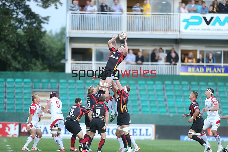 Dragons lock Matthew Screech wins the line out ball.<br /> RaboDirect Pro 12<br /> Newport Gwent Dragons v Ulster<br /> Rodney Parade<br /> 06.09.13<br /> <br /> ©Steve Pope-SPORTINGWALES