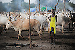 SOUTH SUDAN  Bahr al Ghazal region , Lakes State, Dinka shepherd with Zebu cow in cattle camp, young mother with child / SUED-SUDAN  Bahr el Ghazal region , Lakes State, Dinka Hirten mit Zeburindern im cattle camp, junge Mutter mit Kind