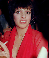Liza Minnelli 1976<br /> John Barrett/PHOTOlink.net /MediaPunch