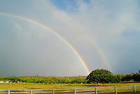 Double rainbow over grazing horses on Oahu's north shore