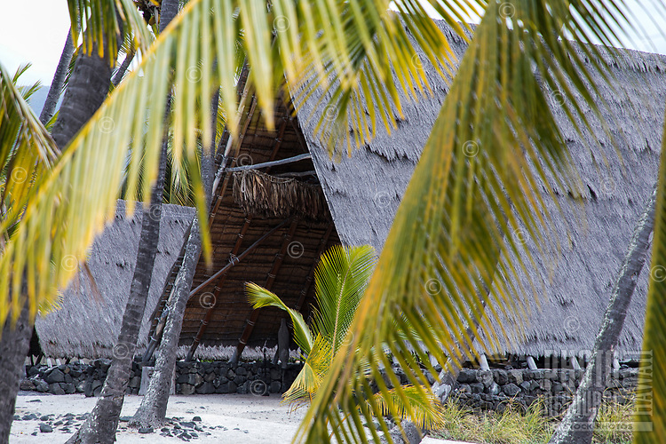 Two traditional thatched hale (houses or structures) at Pu'uhonua o Honaunau, Big Island.