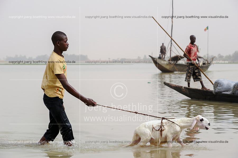 MALI, Mopti, pinnace boats on river Niger, transport of bags with charcoal to the market / MALI, Mopti, Pinasse auf dem Fluss Niger