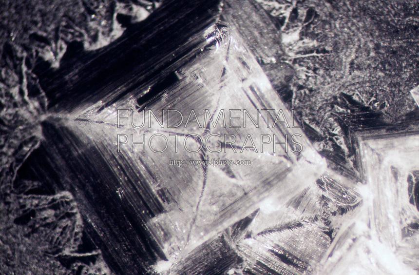 SALT CRYSTALS - NaCl