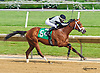 Jambles winning at Delaware Park  on 5/25/15