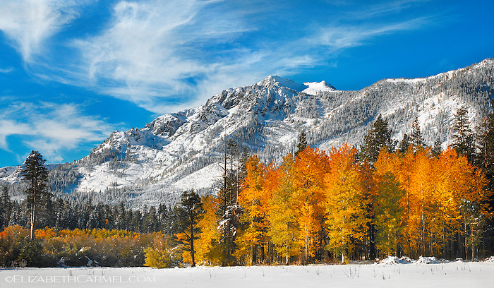 Autumn Snow, Mt. Tallac