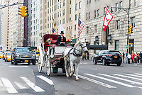 New York, NY - 31 March 2016 - White carriage horse trotting west along Central Park South. ©Stacy Walsh Rosenstock