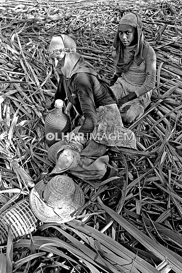 Trabalho de boias-frias em canavial. Sertãozinho. São Paulo. 1980. Foto de Juca Martins.