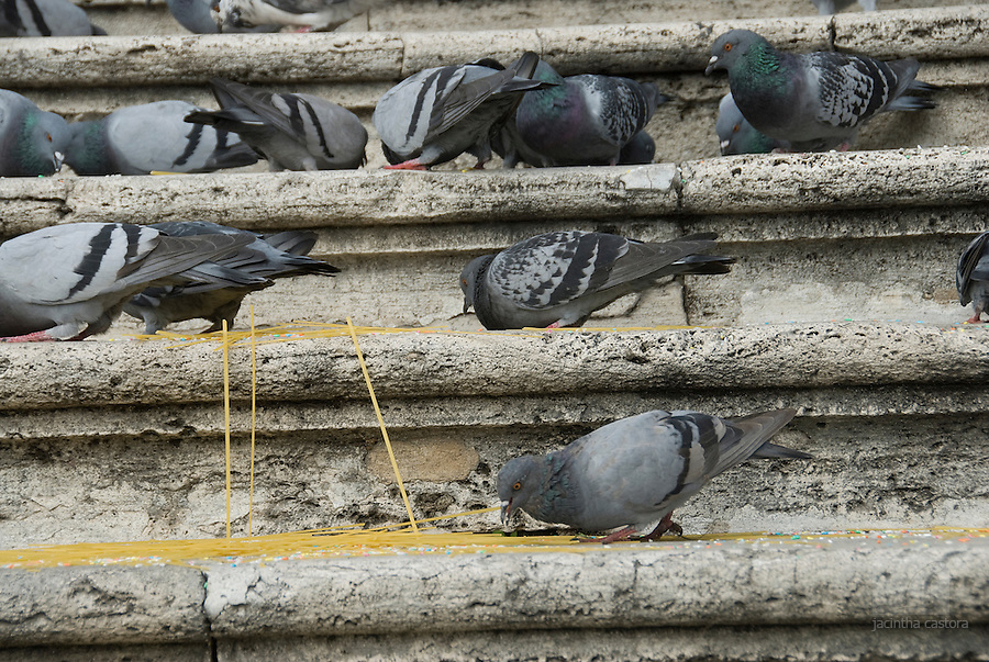 In rome, italy married couples are not only welcomed with rice, but also with spagetti. The pigeons are very happy with that.