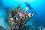 A diver explores the wreck of a US truck, dumped at the end of World War 2, Solomon Islands