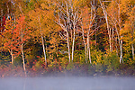 Mist rises from a pond in autumn in Millinocket, ME, USA