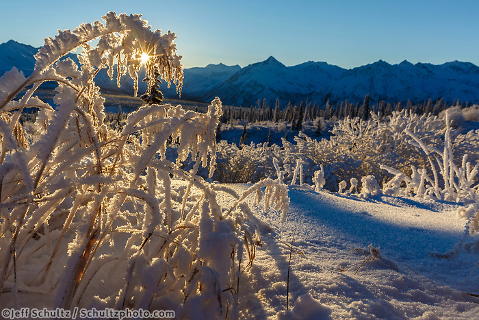 Winter landscape of hoar-frost covered grasses and Chugach Mountains in the Sheep Mountain area of Southcentral, Alaska