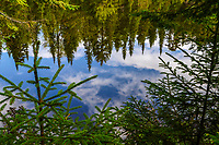Cedar Lake, Adirondack Forest Preserve, New York
