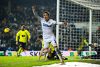 Leeds United's Pablo Hernandez appeals to the linesman believing he had scored<br /> <br /> Photographer Alex Dodd/CameraSport<br /> <br /> The EFL Sky Bet Championship - Leeds United v Blackburn Rovers - Wednesday 26th December 2018 - Elland Road - Leeds<br /> <br /> World Copyright &copy; 2018 CameraSport. All rights reserved. 43 Linden Ave. Countesthorpe. Leicester. England. LE8 5PG - Tel: +44 (0) 116 277 4147 - admin@camerasport.com - www.camerasport.com