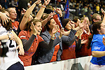 Berlin, Germany, February 01: Fans of Duesseldorfer HC celebrate after defeating HTC Uhlenhorst Muehlheim 4-1 to win the Deutsche Meisterschaft on February 1, 2015 at the Final Four tournament at Max-Schmeling-Halle in Berlin, Germany. Final score 4-1 (1-0). (Photo by Dirk Markgraf / www.265-images.com) *** Local caption ***