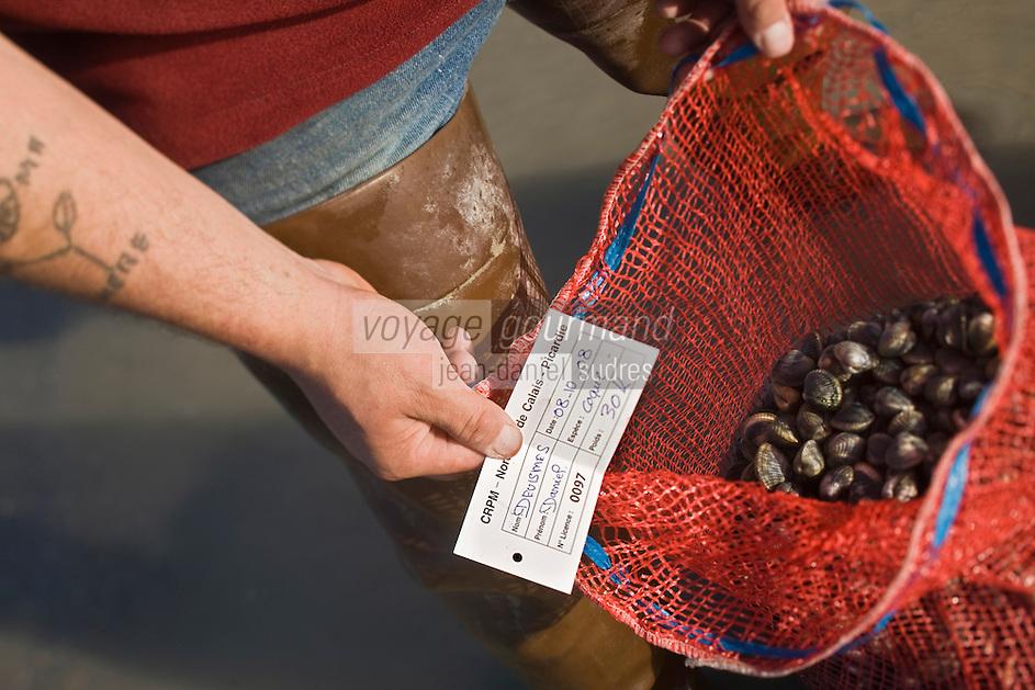Europe/France/Picardie/80/Somme/Baie de Somme/Le Hourdel: ramassge des coques de La Baie de Somme, à la Pointe du Hourdel -Mise en sac des coques