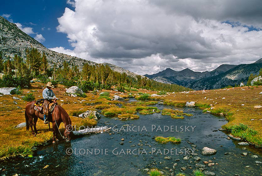 Cowboy watering horse near Rose Marie Lake, Sierra National Forest, California