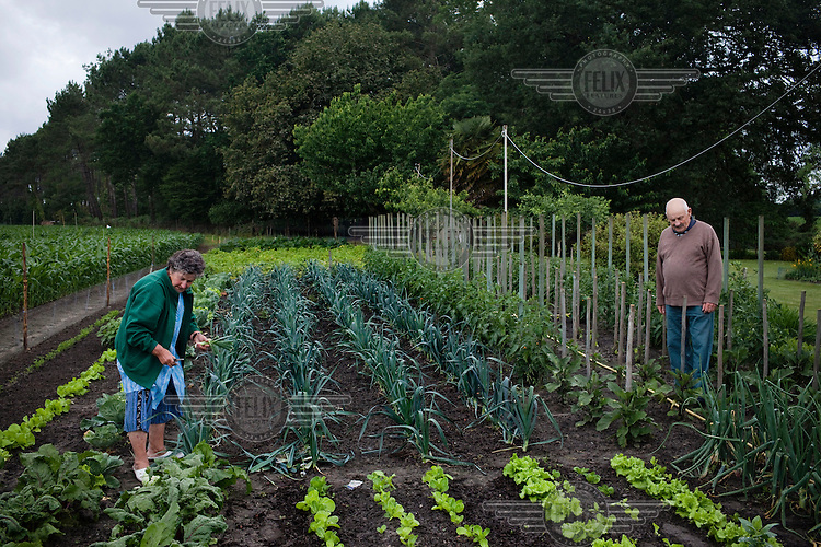 Joseph Lacroix and his wife Marie-Therese, both retired farmers, in their vegetable garden in Saint-Geours-de-Maremne.
