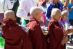 Young Monks, Shwezigon Pagoda