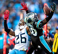 11/3/19: Photography of the Carolina Panthers v. The Tennessee Titians, during their Sunday afternoon game at Bank of America Stadium.<br /> <br /> Charlotte Photographer- PatrickSchneiderPhoto.com