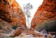 Image Ref: CA688<br />