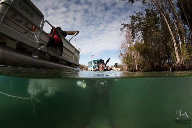 Split over / under shot of diver with a manatee