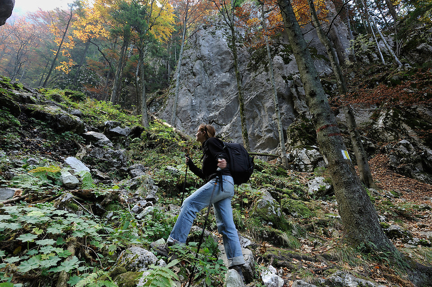 Valea Crapaturii, National Park Piatra Craiului, Transylvania, Southern Carpathians, Romania