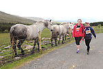 24-05-2014: Norma Nyhan  and  Elaine Kehilly, Cork, attract some interesting observors as they take part in the   Sneem Mace  JFK 50 Mile Challenge on Saturday.  The JFK 50 Mile Walk first came about in the 1960s in the USA when President  John F. Kennedy (JFK) announced that an endurance test of walking 50 miles was to be performed by U.S. servicemen to prove they were in ready military condition.  Benefiting charities from the Sneem Mace  walk are  Irish Cancer Society and St.Mary of the Angels, Beaufort.  Picture: Eamonn Keogh (MacMonagle, Killarney) NO REPRO.. FREE PR PHOTO