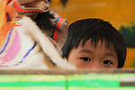 Kaohsiung, Taiwan -- Child puppeteer at a traditional Taiwanese hand puppet theater performance at a roadside park in Kaohsiung.