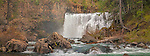 Panorama of Middle McCloud Falls, McCloud River, Shasta - Trinity National Forest, Siskiyou County, California