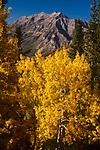 Mt Timpanogos,Wasatch Range,Utah