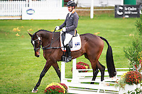 AUS-Christopher Burton rides Fire Fly (Interim-4TH) during the CCI1*6YO Dressage at 2016 Mondial du Lion FEI World Breeding Eventing Championships for Young Horses. Friday 21 October. Copyright Photo: Libby Law Photography