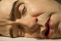RIO DE JANEIRO ,RJ - 19.03.2014 - EXPOSICAO RON MUECK - As esculturas dos artista plástico hiperrealista Ron Mueck estão na América do Sul pela primeira vez. Depois de passarem pela Argentina, as obras chegam ao Museu de Arte Moderna do Rio de Janeiro. O Rio será a única cidade brasileira a receber a exposição, que estará aberta ao público do dia 20 de março a 01 de junho. Mueck, que é australiano, começou sua carreira criando bonecos e animatronics para a TV da Austrália. Depois, ele se mudou para o Reino Unido e passou a trabalhar para agências de publicidade e para a indústria do cinema. Alguns trabalhos dele podem ser vistos no filme Labirinto, com David Bowie. Nesse mesmo filme ele dublou o personagem Ludo. (Foto: Milene Cardoso / Brazil Photo Press).