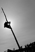 Silhouette of dead raven hanging on pole, used as scarecrow to keep birds away from drying cod stockfish, Lofoten, Norway