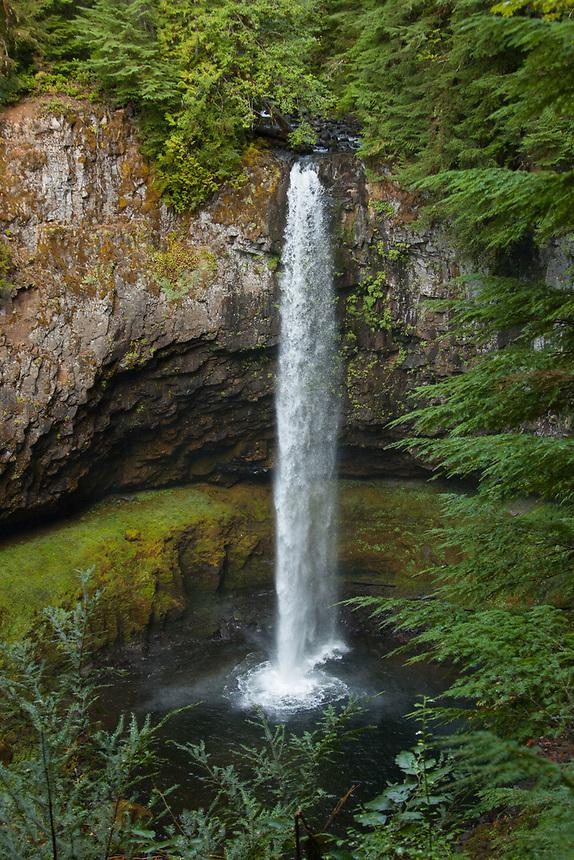 Upper Falls, Lewis River, Gifford Pinchot National Forest, Washington, US