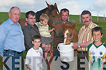PONY SHOW: Preparing for the Killorglin Pony Show, which will be held in the Showgrounds, Tralee Road, Killorglin, on Sunday 5th August, are l-r: Tom Johnson, Robert Evans, Daniel Evans, Robert Evans, Johnny Cronin, Glen Evans and Daniel Whittleton..