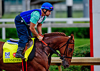 LOUISVILLE, KENTUCKY - APRIL 30: Gunnevera jogs on the main track during Kentucky Derby and Oaks preparations at Churchill Downs on April 30, 2017 in Louisville, Kentucky. (Photo by Scott Serio/Eclipse Sportswire/Getty Images)
