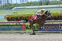HALLANDALE BEACH, FL - JULY 01:   #1 Diamond Oops (KY) wth jockey Luis Saez on board, wins the Kiss a Native Stakes on Summit Of Speed Day at Gulfstream Park on July 01, 2017 in Hallandale Beach, Florida. (Photo by Liz Lamont/Eclipse Sportswire/Getty Images)