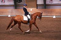 Helen Johansson riding Strano (Hejbols De Strano, e De Noir - Golfstrom II, born 2007, breeder Per Torp, owner Helen Johansson) in dressage competition Latt A:3 at Malmo Ridklubb. <br /> The couple won the Latt A:3 with 70,857%.<br /> Malmo, Sweden.<br /> November 2013.