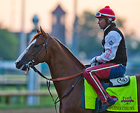 May 1, 2014: California Chrome, trained by Art Sherman, exercises in preparation for the Kentucky Derby at Churchill Downs in Louisville, KY. Scott Serio/ESW/CSM