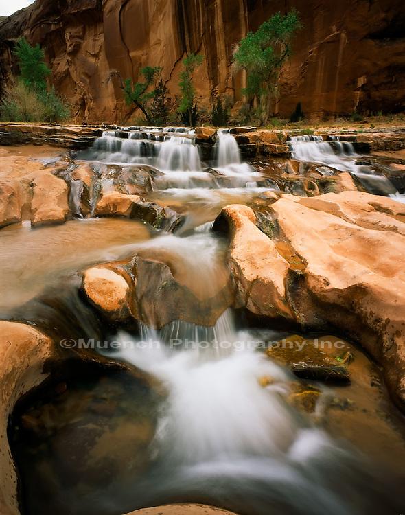 Chaol Canyon, Glen Canyon National Recreation Area