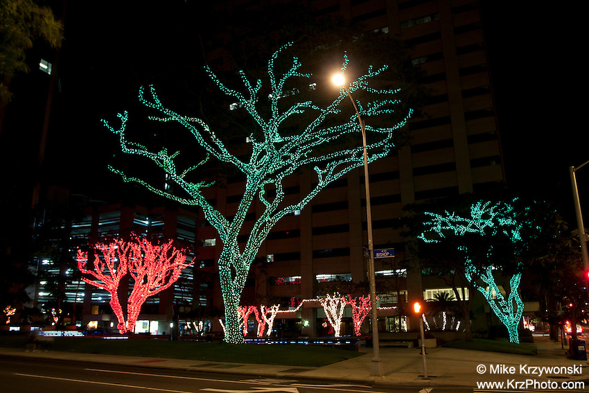 Christmas lights in Downtown Honolulu, Oahu, Hawaii