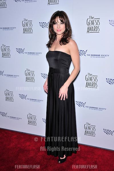 Linda Cardellini at the 22nd Annual Genesis Awards, produced by the Humana Society of the USA, at the Beverly Hilton Hotel, Beverly Hills..March 29, 2008  Beverly Hills, CA.Picture: Paul Smith / Featureflash