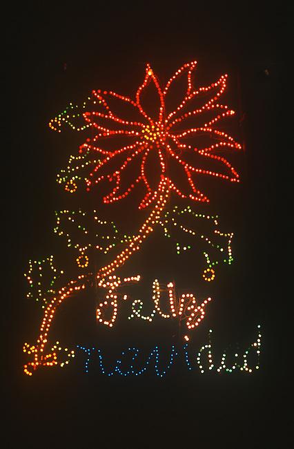 Christmas Lights, Oaxaca City, Oaxaca, Mexico